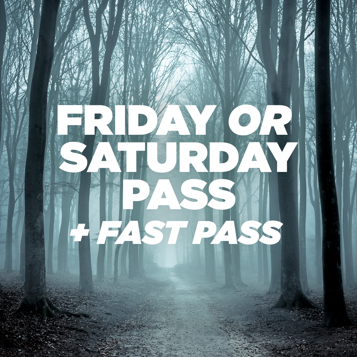 Friday or Saturday General + Fast pass